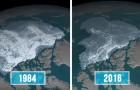 Cette carte de la NASA montre à quel point l'Arctique a changé en 30 ans
