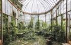 La revanche de la nature: un photographe nous montre la beauté des lieux abandonnés