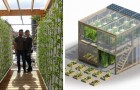 Voici l'innovante serre urbaine qui peut produire jusqu'à 6 tonnes de nourriture par an