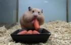 Moi j'aime les carotes :-)