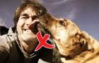 Il y a une raison très sérieuse pour laquelle vous ne devriez pas laisser votre chien vous lécher le visage