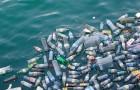 De hoeveelheid plastic in oceanen zal in minder dan 10 jaar tijd verdrievoudigen