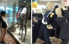 Ecco alcuni tra i manichini più inquietanti e divertenti che si siano mai visti in un negozio