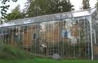 Una famiglia svedese ha circondato la propria casa con una maxi serra, per ottenere più calore e poter coltivare ortaggi