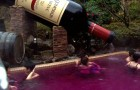 Wijntherapie is een eeuwenoude traditie die je allemaal voordelen biedt... en geheelonthouders ook!