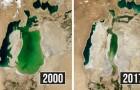 Queste immagini satellitari ci mostrano la velocità con cui l'uomo sta distruggendo il pianeta