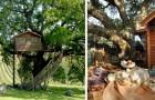 Case sull'albero immerse nella lavanda: ecco il luogo giusto per una vacanza da sogno