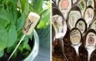 12 targhette segna-pianta che vorrete subito usare per decorare i vostri vasi