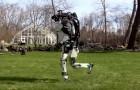 Il modo in cui questo umanoide corre in mezzo al prato ci fa capire a che punto è arrivata la robotica