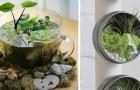 24 geniale Ideen ein Terrarium einzurichten