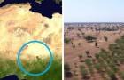 En Afrique, on construit la Grande Muraille Verte : un