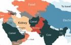 Diese Karte zeigt an, welches Produkt in Google in allen Ländern der Welt am häufigsten nachgefragt wird