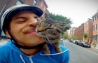 GoPro: Boy on a bike with the cat