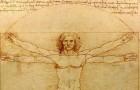 Sie alle wissen, wie Leonardos vitruvianischer Mensch aussieht, aber sind Sie sicher, dass Sie seine Bedeutung kennen?