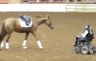 A horse approaches a woman in a wheelchair and what follows captivates the spectators!