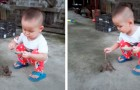 A three-year-old boy feeds his little birds and now there is a video clip that has touched the hearts of millions of people