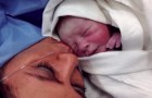 Eine Mutter kommt mit dem Neugeborenen nach Hause, aber sie ist überzeugt, dass er nicht ihr Sohn ist: Nach ein paar Monaten entdeckt sie die Wahrheit