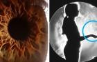 7 fenomeni che accadono dentro di noi e che hanno davvero dell'incredibile
