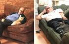 Ce bénévole de 75 ans visite ce refuge pour chats tous les jours... et fait la sieste avec eux.