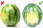 Siamo ancora capici di distinguere un frutto maturo da uno che non lo è?