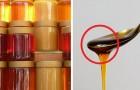 6 métodos da tradição popular que podem dizer se o mel é de baixa qualidade