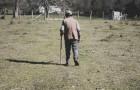 La vicenda del contadino che per colpa dell'avidità perse TUTTO in un solo giorno
