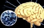 7 aliments qui sont un pur concentré d'énergie pour notre cerveau