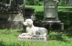 A New York, gli animali domestici potranno essere seppelliti vicino ai proprietari nei cimiteri