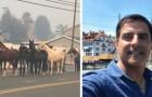 Een bekende stuntman in Hollywood riskeerde zijn leven om honderden paarden te redden uit de branden in Californië