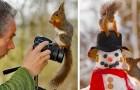 Un photographe suit les écureuils tous les jours depuis 6 ans : voici quelques-unes de ses plus belles photos
