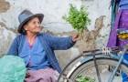 Ser gentil faz bem para a saúde do cérebro, palavra dos neuropsicólogos