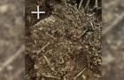 La peste nera decimò i neolitici: gli scienziati hanno scoperto il batterio in una tomba di 5000 anni fa
