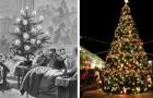 L'histoire du sapin de Noël : une tradition encore aimée, mais vieille de plusieurs siècles