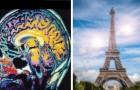 6 unglaubliche Dinge, zu denen das menschliche Gehirn in der Lage ist