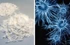 Wissenschaftler experimentieren mit einem neuen Ansatz gegen Drogen: die Beseitigung von Erinnerungen zur Überwindung der Sucht