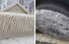 24 images féroces qui témoignent de la vague de froid titanesque qui a frappé notre planète