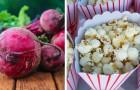 17 aliments que vous pouvez manger sans prendre une once de poids