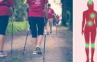 Veja como 20 minutos de caminhada por dia podem mudar o seu corpo e a sua vida