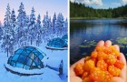 La Finlandia è la meta più in voga per il 2019: ecco 13 buoni motivi per salire sul prossimo aereo
