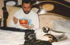 18 photos de Freddie Mercury avec ses chats, qu'il aimait comme si c'étaient ses enfants