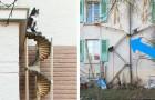 En Suisse, les immeubles installent des escaliers extérieurs pour chats... et c'est une idée géniale