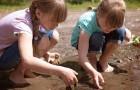I bambini che crescono vicino agli spazi verdi hanno un rischio minore di sviluppare alcolismo e disturbi psicologici