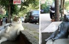 Il gatto più amato della città viene a mancare, così gli fanno una statua nel suo posto preferito
