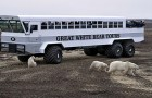 Questo hotel mobile ti permette di dormire nella tundra circondato dagli orsi polari