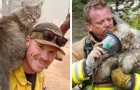 15 bewegende Bilder von Feuerwehrleuten, die ihr Leben riskieren, um Welpen zu retten