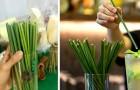 Un'azienda vietnamita produce cannucce con i fili d'erba anziché con la plastica: ecco tutti i sorprendenti vantaggi