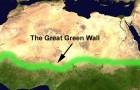 La Grande muraglia verde africana : 8 mila chilometri di alberi per arginare il deserto