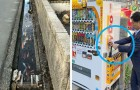 15 Fotos, die bestätigen, dass Japan ein Land voller Ideen ist, die der Rest der Welt kopieren sollte