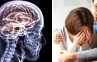 Hypersensibilité : voici pourquoi le don de l'empathie est le signe d'un cerveau