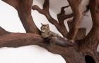Un homme recrée un superbe arbre dans le salon d'une maison, et le chat semble beaucoup apprécier le résultat final